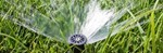 5 Signs Your Sprinkler System Needs a Professional Fix